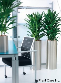 plant containers plant care inc