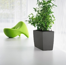 Plant Containers 30
