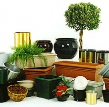Plant Containers 8