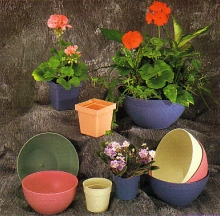Plant Containers 4